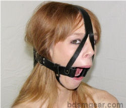 Hard Plastic Ring Gag With Harness