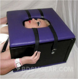 BDSM Smother Box